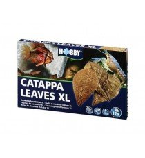 Hobby Catappa XL