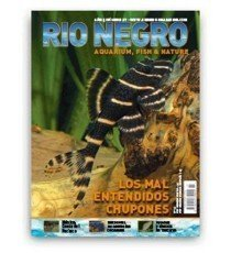 Revista Río Negro Número 27