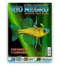 Revista Río Negro Número 12