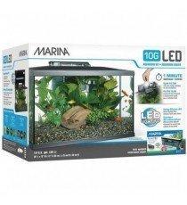 Kit Acuario Marina LED 10G 38 Litros