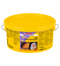 SERA Baktopur Direct (1 pastilla)