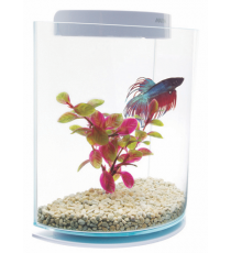Betta Kit Media Luna Marina