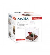 Betta Kit Cubus Marina